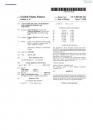 SBC USA patent-3