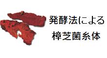 発酵法による樟芝菌糸体Ruby Mushroom®